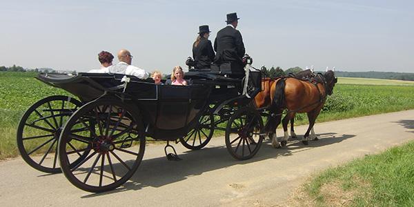 Kutschfahrt, Kutsche, Pferd, Hochzeit