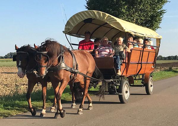 Kutschfahrt, Kutsche, Pferd, Planwagen